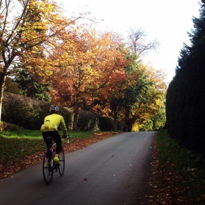 Autumn riding near Alton Towers
